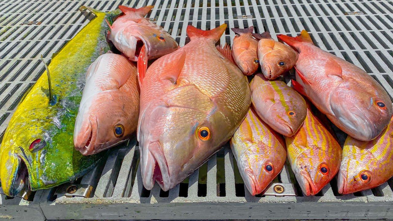 Snapper and Mahi Mahi! Catch n Cook (Jupiter Florida Fishing)
