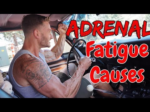 Do You Have Adrenal Fatigue? Top 3 Causes