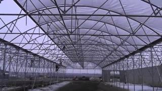 видео: Накрытие блочной теплицы пленкой в зимнее время. Обзор оборудования теплицы