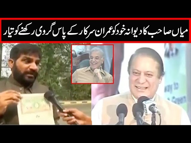 Govt can capture my property and arrest me as guarantor of Nawaz Sharif, Mirza Akhlaq Ahmad