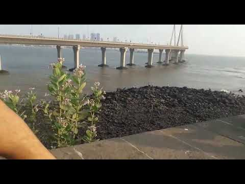 Mumbai bandstand kewal chhetri