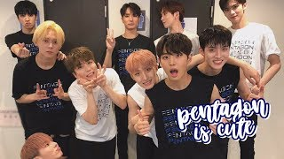 pentagon being cute for ten minutes