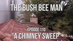 Removing a Wild Bee Hive from a Chimney - The Bush Bee Man
