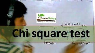 Chi square test