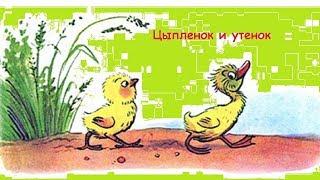 """""""Цыпленок и утенок"""" Веселые сказки для детей. Сказки Сутеева с красочными картинками. (Full HD)"""