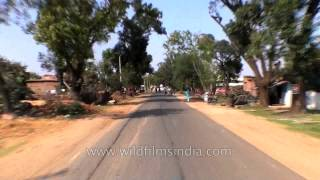 Travelling to Kanha from Jabalpur by road