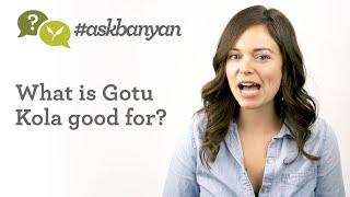 What Is Brahmi/Gotu Kola & What Is It Good For? | Ayurvedic Herbs | Ayurveda Q&A | #AskBanyan