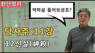 [현단명리] 당사주 11강 12神殺(신살)