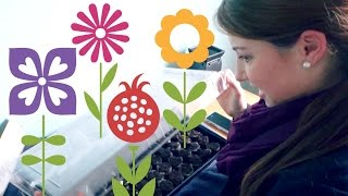 LEARNING TO GARDEN