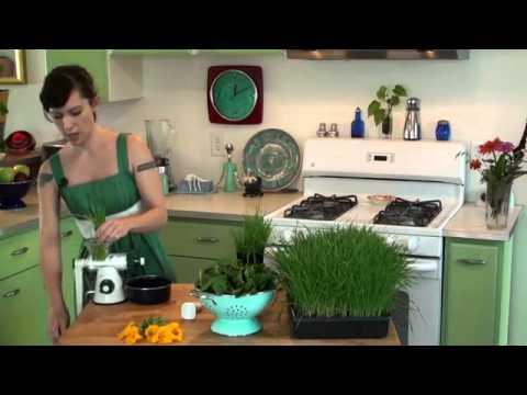 healthy juicer youtube. Black Bedroom Furniture Sets. Home Design Ideas