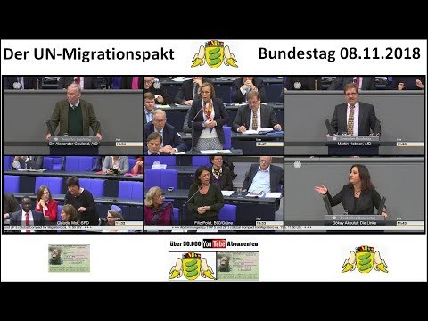 Der UN-Migrationspakt im Bundestag 08.11.2018 - Bananenrepublik