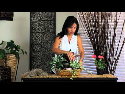 How to Decorate Wicker Baskets : Decorations for the House