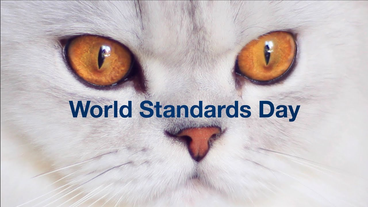 Video standards create a global stage