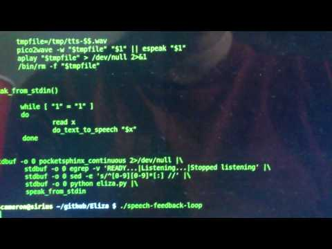 Speech recognition == eliza == speech synthesis loop