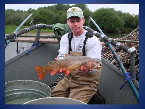 Teton River Idaho 2011 Fish Estimates