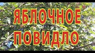 Яблочное повидло (быстрый рецепт).