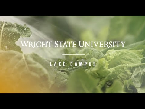 Wright State University Lake Campus