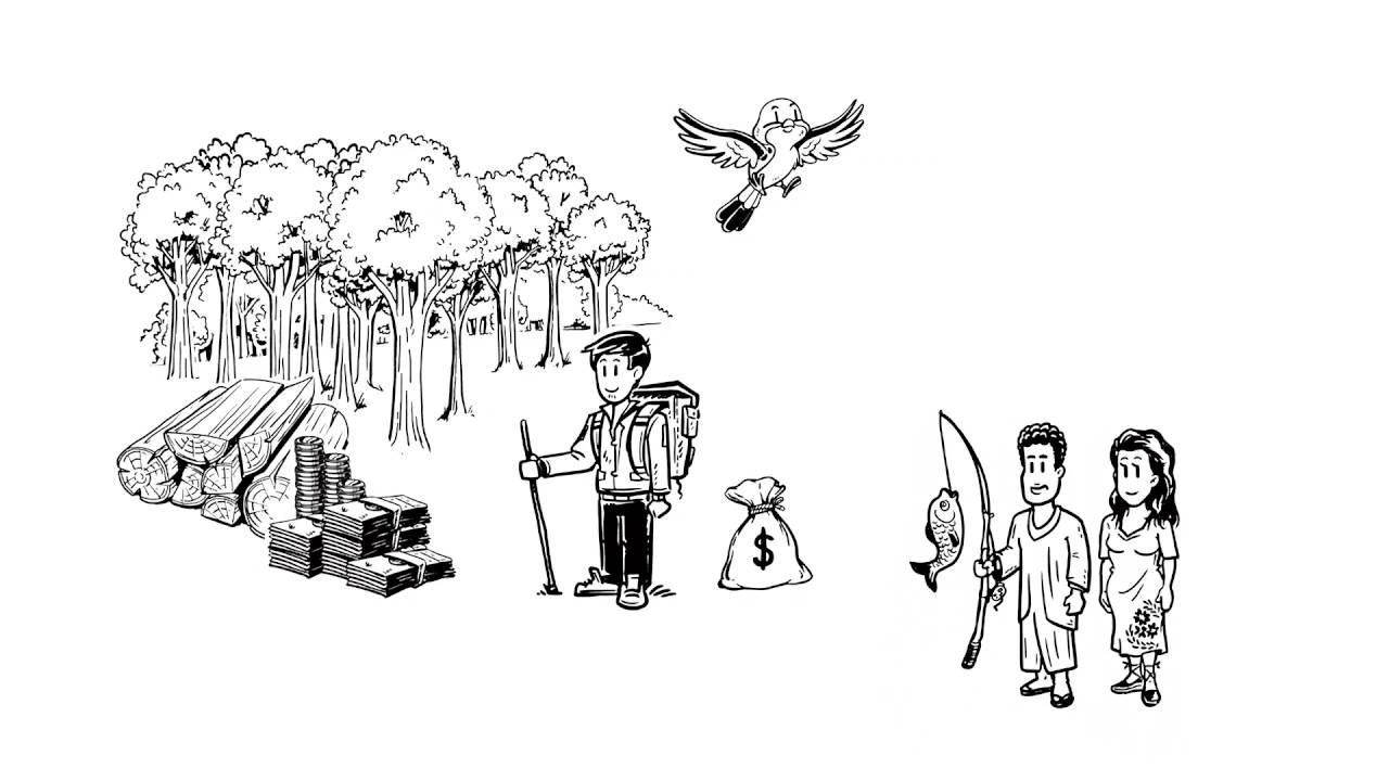 Por qué el manejo de nuestros recursos naturales es importante? - YouTube