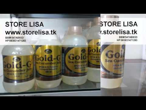Jual Jelly Gamat Gold G Menyembuhkan Berbagai Penyakit Original Murah Asli Palembang 083831471283