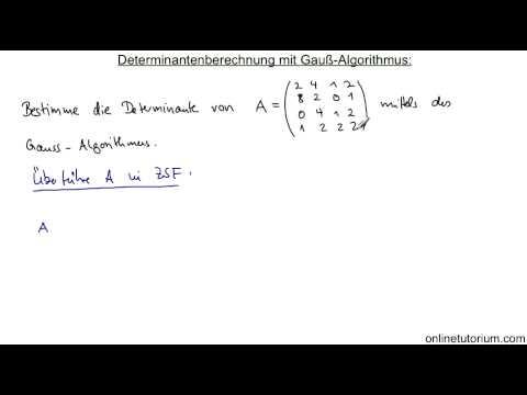 mathematik determinanteberechnung mittels gauss. Black Bedroom Furniture Sets. Home Design Ideas