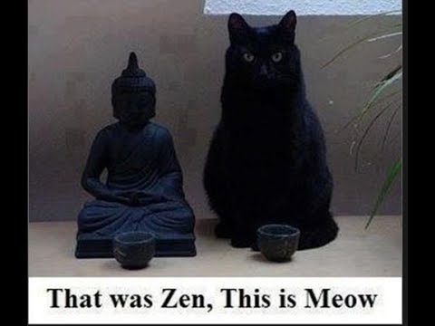 Stock market crash? -Time to Buy Silver and futures in Oil? That was Zen & this is Meow-NL