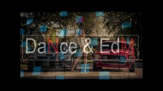 AViVA - Ride Or Die (Original Mix)