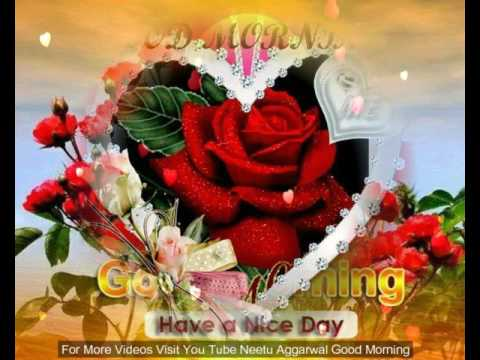 Good morning flowers for yougood morning wishesgreetingssms good morning flowers for yougood morning wishesgreetingssmssayingsquotese cardwhatsapp video m4hsunfo