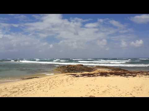 Nisibon beach property punta cana for sale