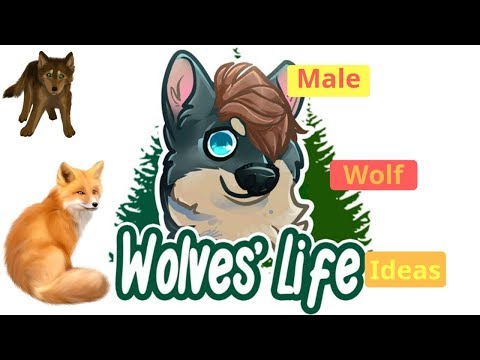 Roblox Wolves Life 3 Female Wolf Ideas Youtube Roblox Wolves Life 3 Male Wolf Ideas Youtube