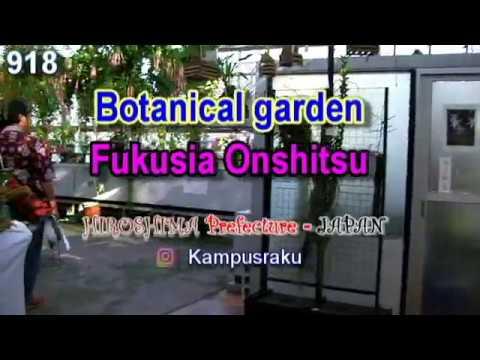 Fukusia Onshitsu   Botanical Garden in Hiroshima   Japan