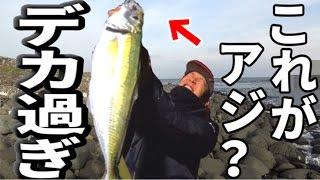 メディア史上最大!!ギガアジが大大大爆釣!!! thumbnail