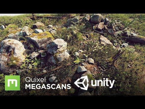 REVEAL: Megascans + Unity