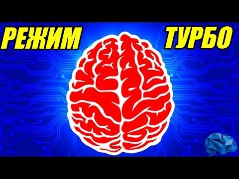 Как перепрограммировать свой мозг