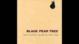 Black Pear Tree - The Mountain Goats and Kaki King