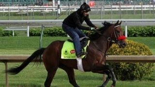 Will Nyquist follow in American Pharoahs footsteps?