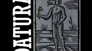 Datura - Yerba Del Diablo (Achico)