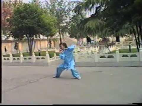 Shen Zhen Jun -  - Tai Chi style Chen Laojia [陈氏太极拳老架 Taijiquan style Chen]