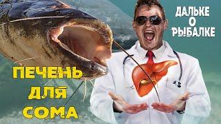 Печень лучшая насадка на сома Виталий Дальке о рыбалке 14