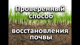 Проверенный способ восстановления почвы.