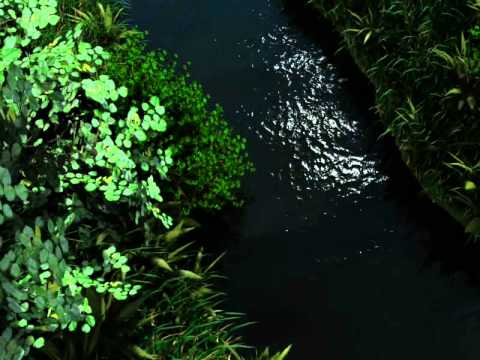 Riparian vegetation geovisualization