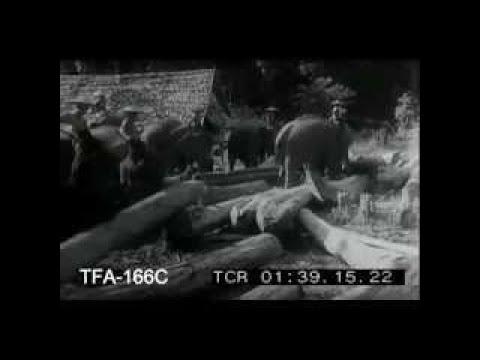 A Trip to Burma 1940