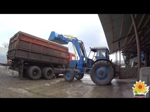 Услуги зерновозов требуются зерновозы для перевозки зерна
