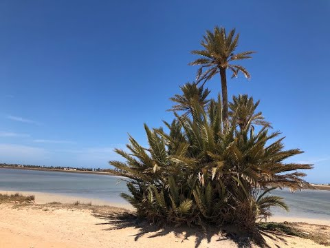 Tunezja Djerba 2019