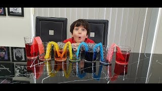 Science Experiment for kids! How to make Rainbow! Walking Water Experiment you can do at home