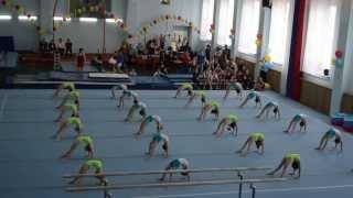 В краю кедровом 2013, спортивная гимнастика