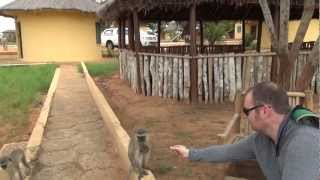 ANGOLA KISSAMA THANKSGIVING SAFARI AND MUSSULO ISLAND