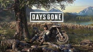 Жизнь после Days Gone Баг