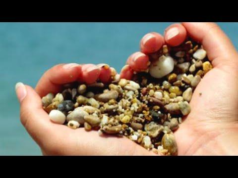 Камни, песок, соли: как защитить почки | Доктор Мясников