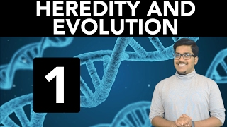 Biology: Heredity and Evolution (Part 1)