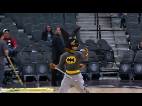 Video: la mascota de San Antonio imitó a Manu y capturó un murciélago